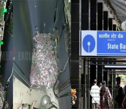 Rat Broke ATM ate money