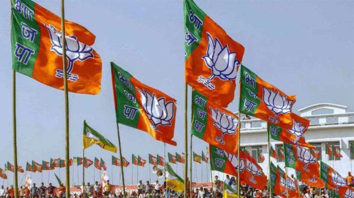 BJP Win Haryana 5 City