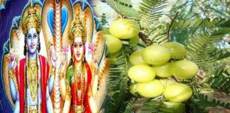 Breaking News, Viral News, Latest News, Trending News, Hindi News, Latest News hindi, India, HindustanFeed, March 17 ekadashi Mata Laxmi Lord Vishnu Puja